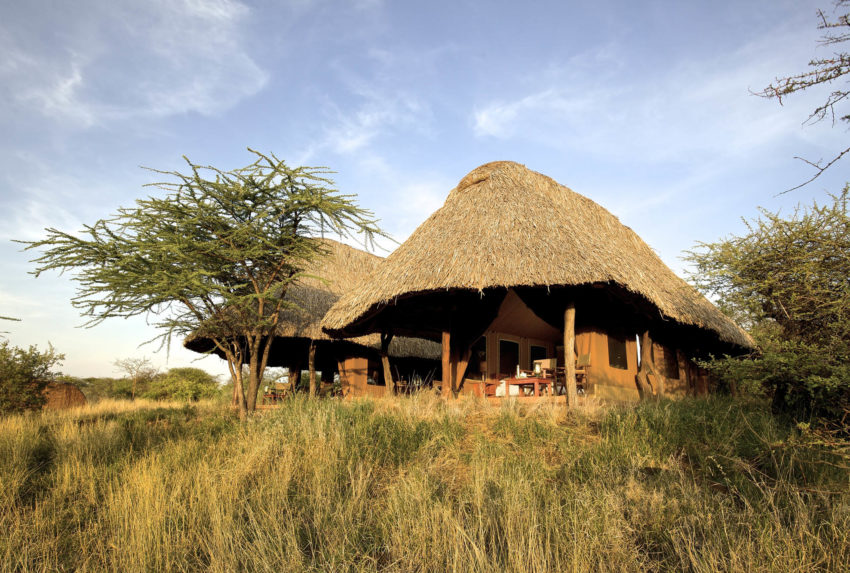 lewa_safari_camp_-_accommodation_-_family_tent-20