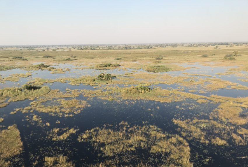 Botswana Helicopter Hannah Rayner