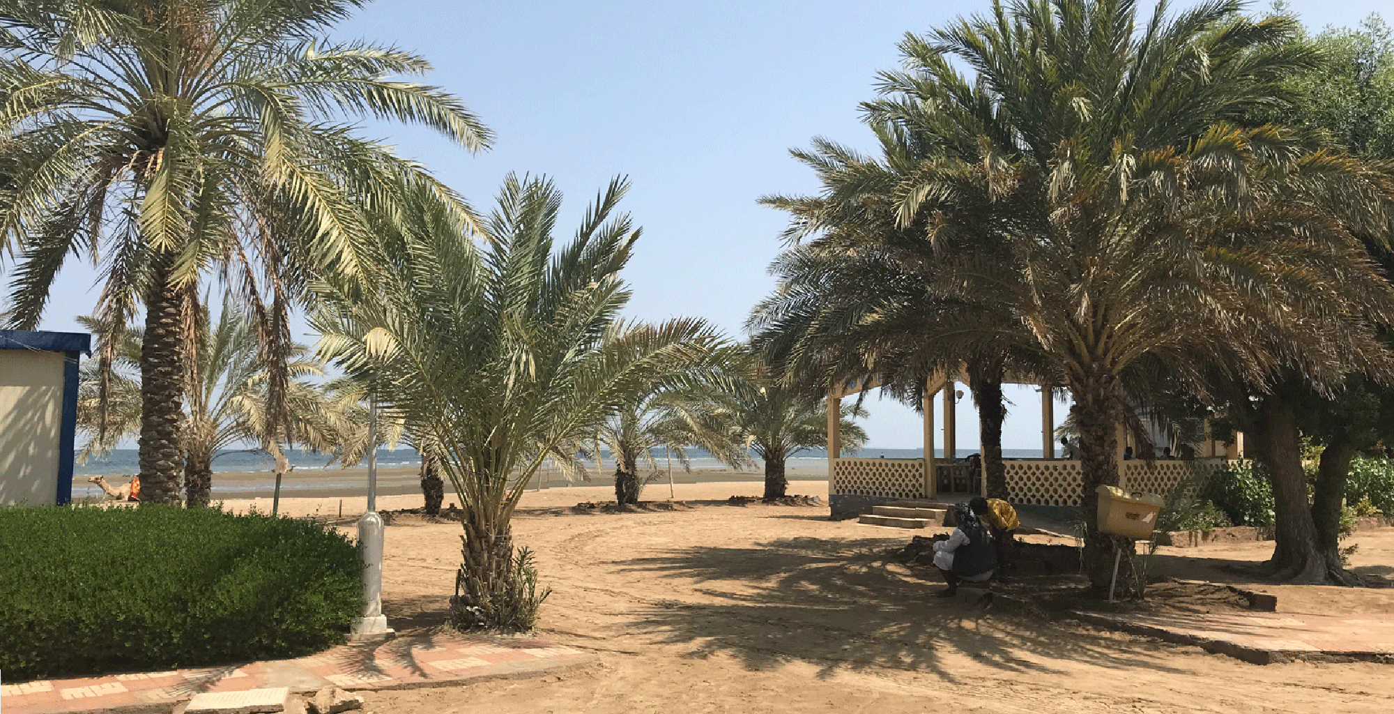 Eritrea-Massawa-Coast