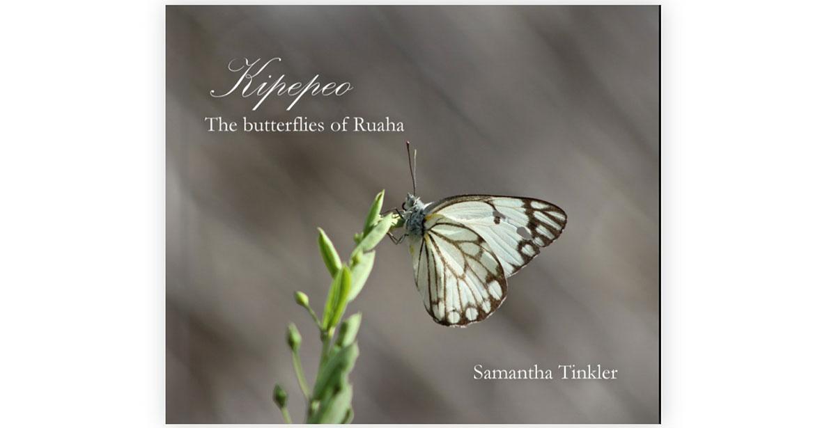 Butterflies-of-Ruaha