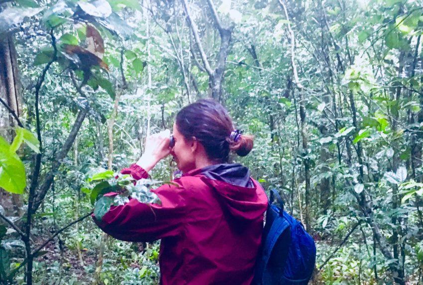 Fiona Walls Uganda Gorilla Trekking