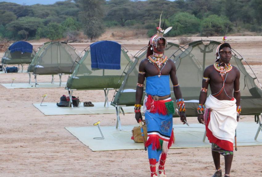 Lattitude Safaris